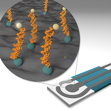Nanobiosensors and Bioanalytical Applications